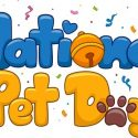 Celebrating Your Pets During National Pet Day