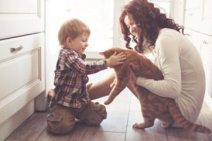 How to Make Your Home Safe for Pets