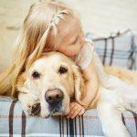 find the right dog breeder