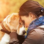 dogs help your anxiety
