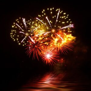 Firework Safety for Pets and Pet Owners